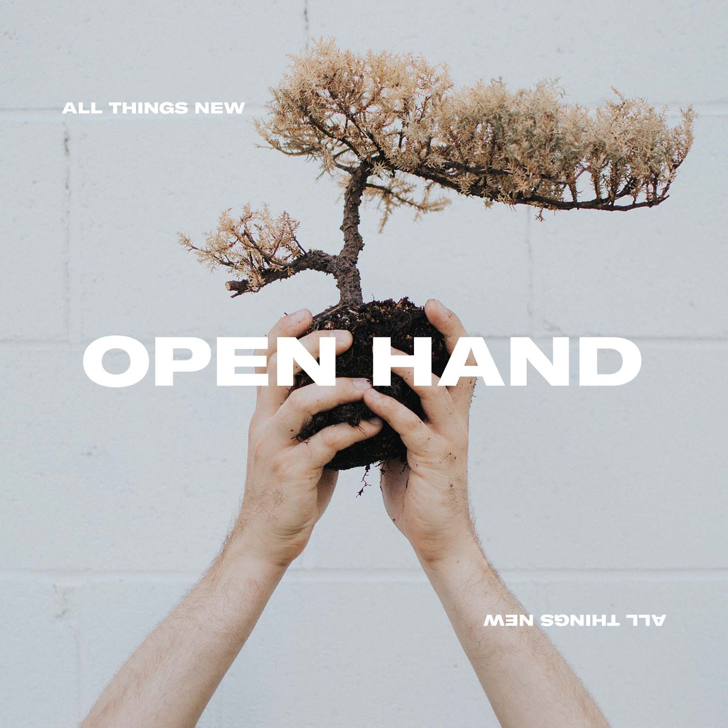 Open Hand: Podcasts   Catch up on all the 'Open Hand' podcasts  here