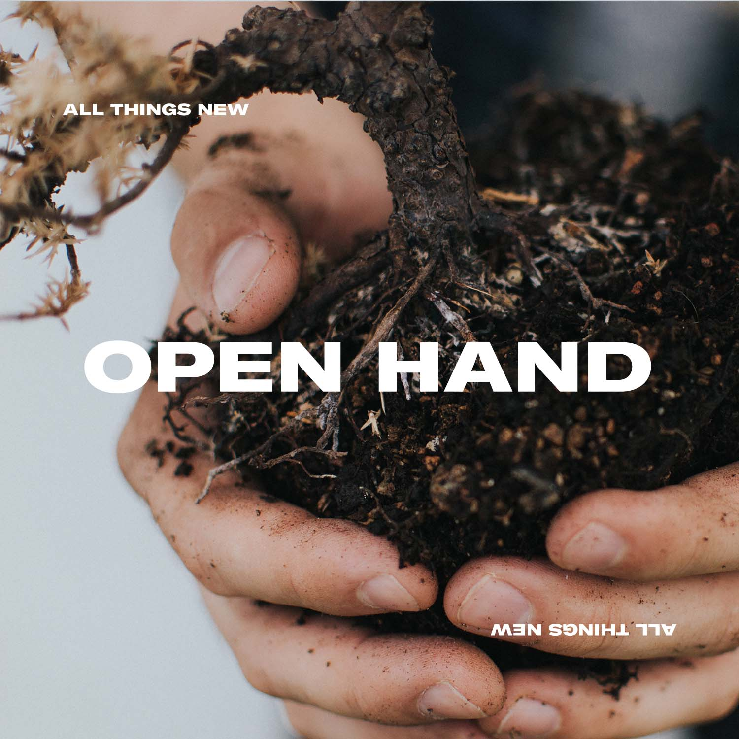 Open Hand: Blogs   Catch up on all the 'Open Hand' blog posts  here