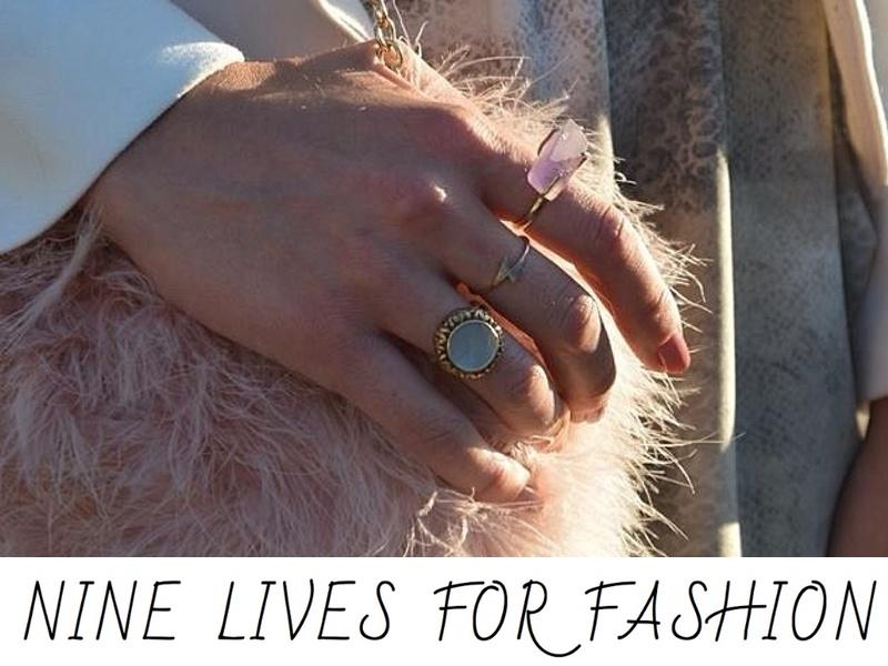 nine lives for fashion .jpg
