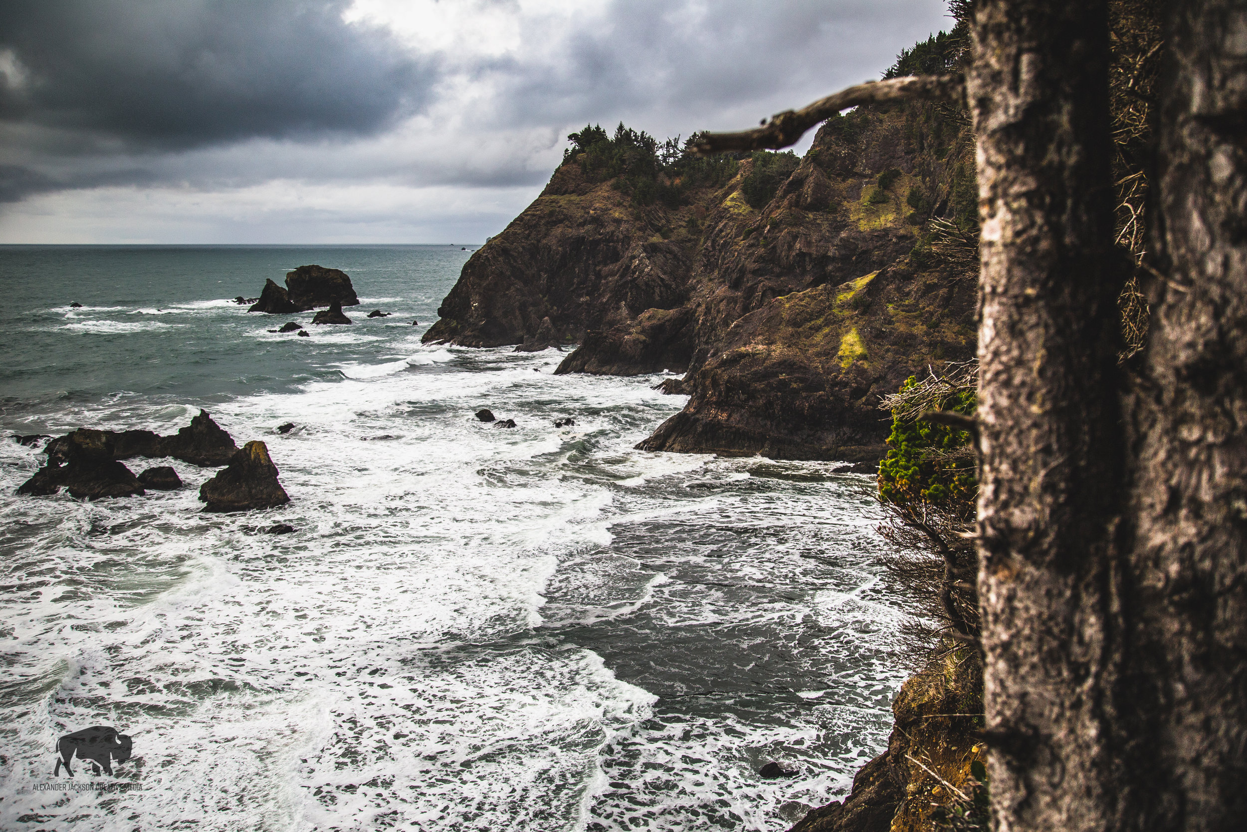 Not surprisingly the Oregon coast has been placed on my 'return to' list. I'll probably go back during the summer though, it was a little too cold and windy for my taste on this particular trip.