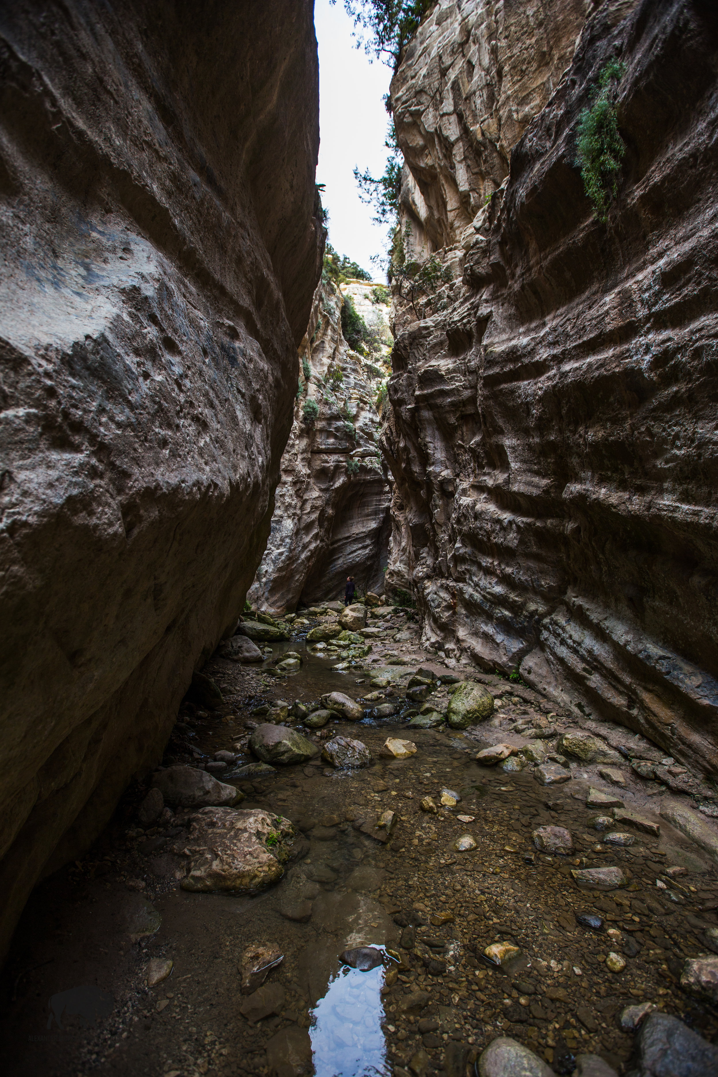 Exploring the depths of this river gorge was pretty cool.