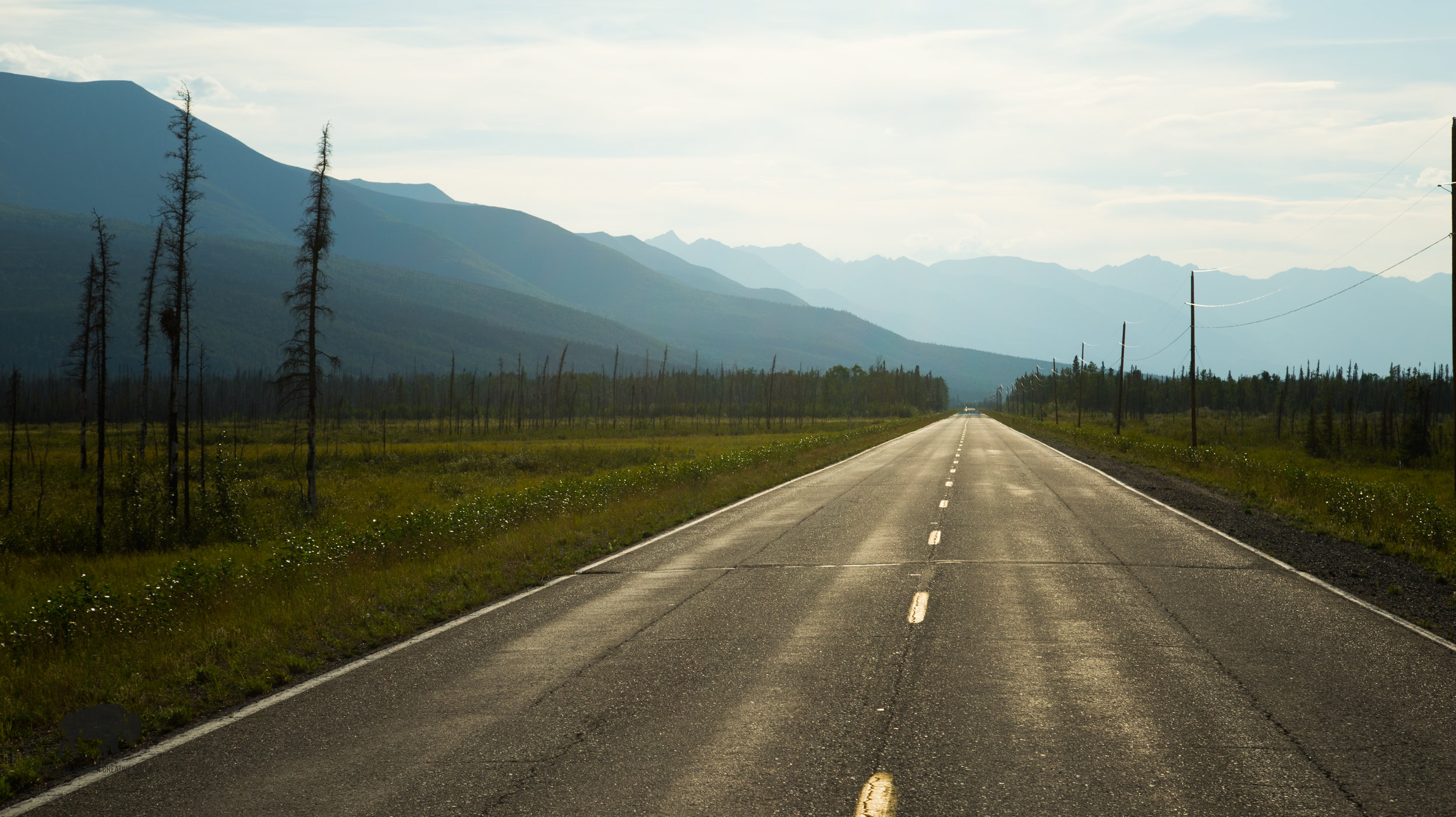 The long stretch of straight road leading from the Tok Junction towards Fairbanks.