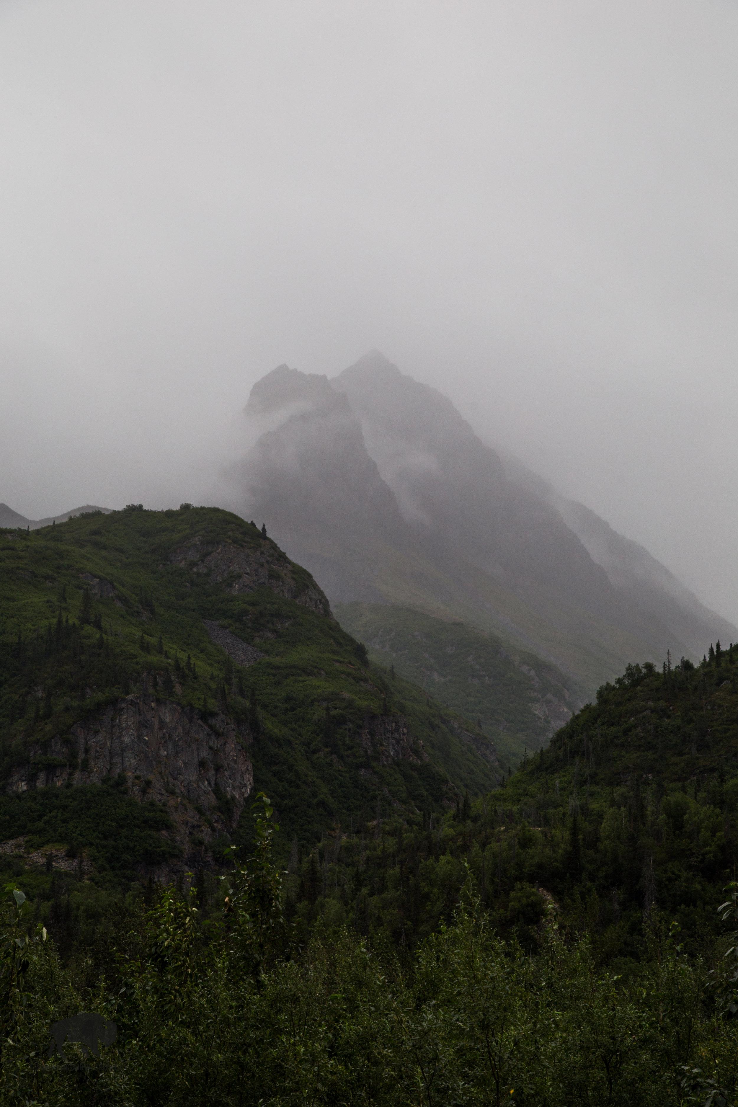 Misty mountain mornings.