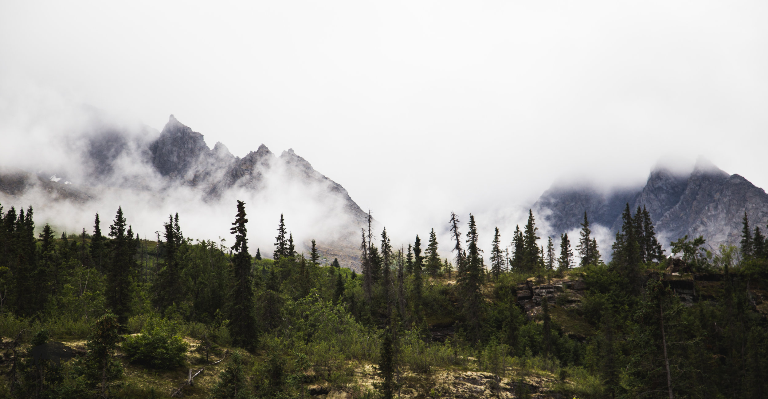 Peaks showing through the mist, the best visuals I got of the surrounding mountains on the way in and out of Valdez.