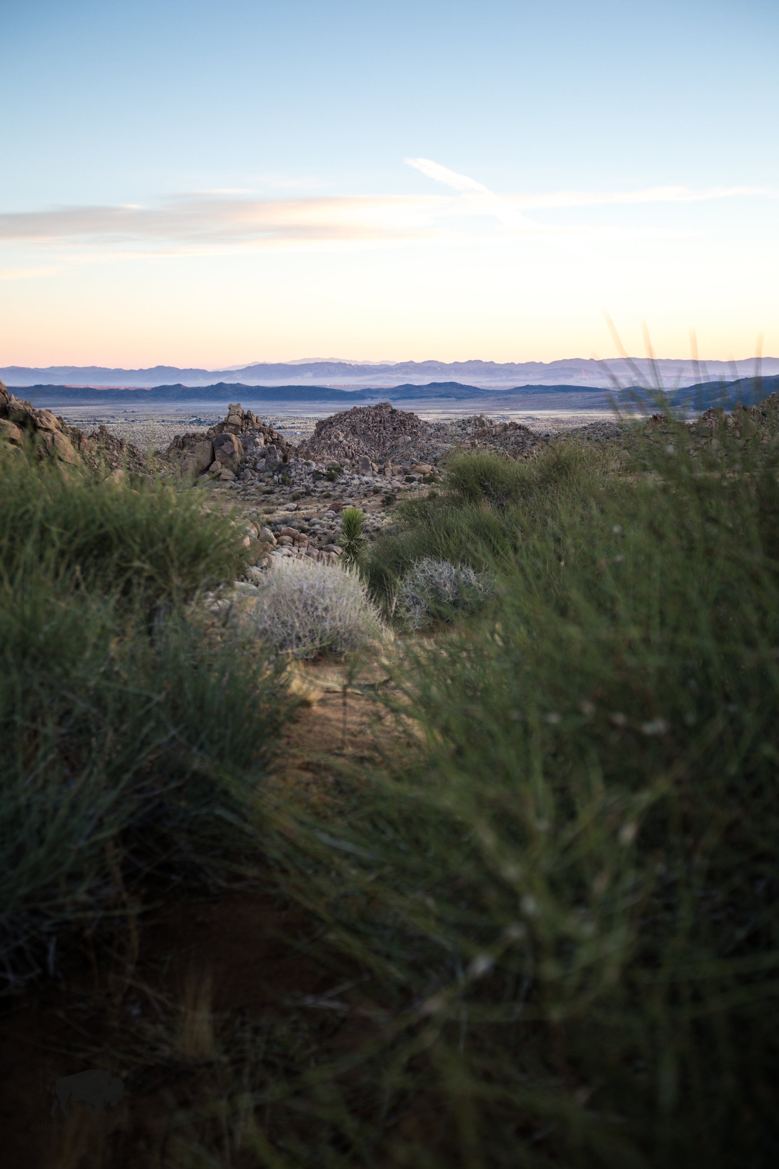 The beautiful pastel colors of the desert never cease to amaze.