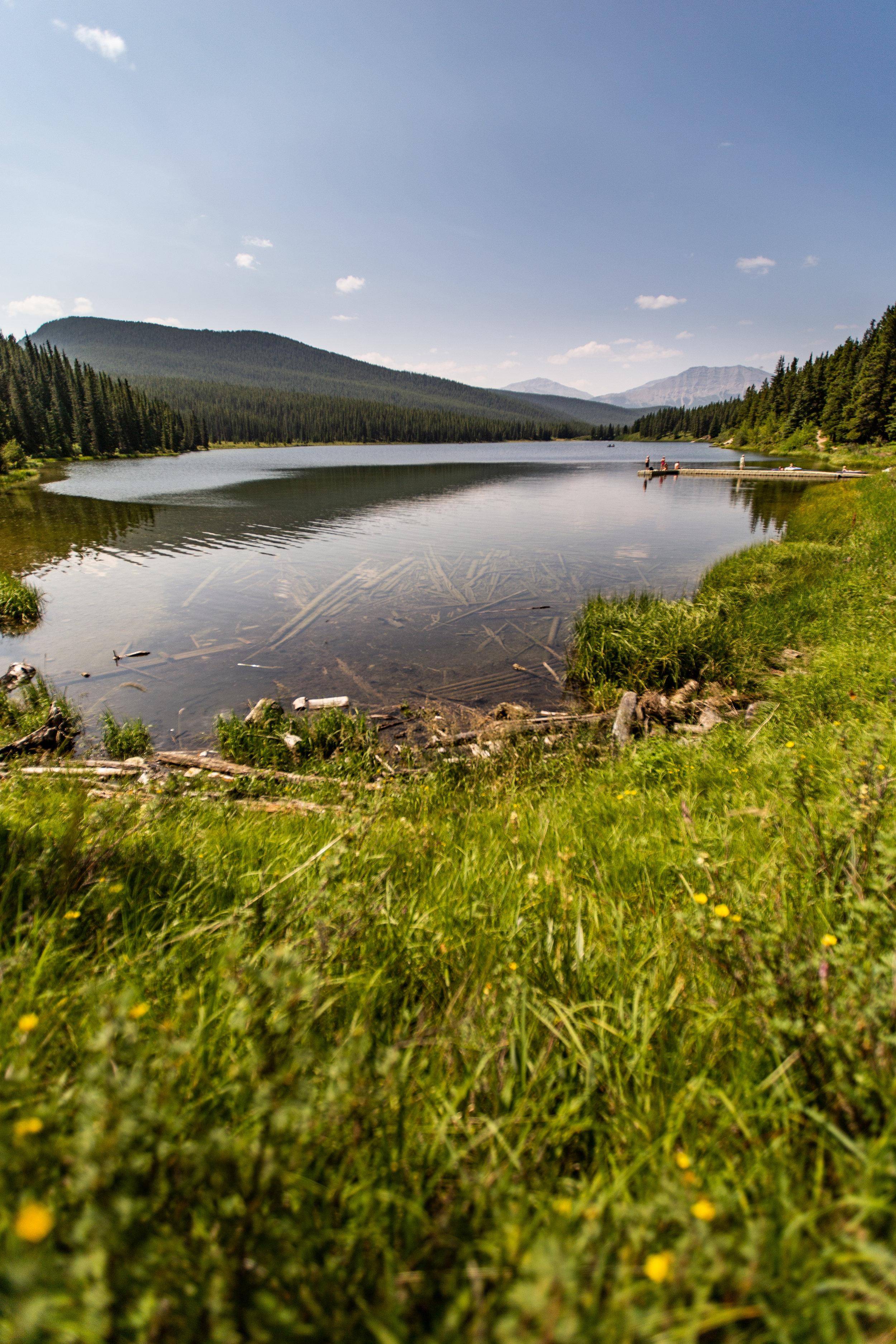 Pepper Lake, along the 40.