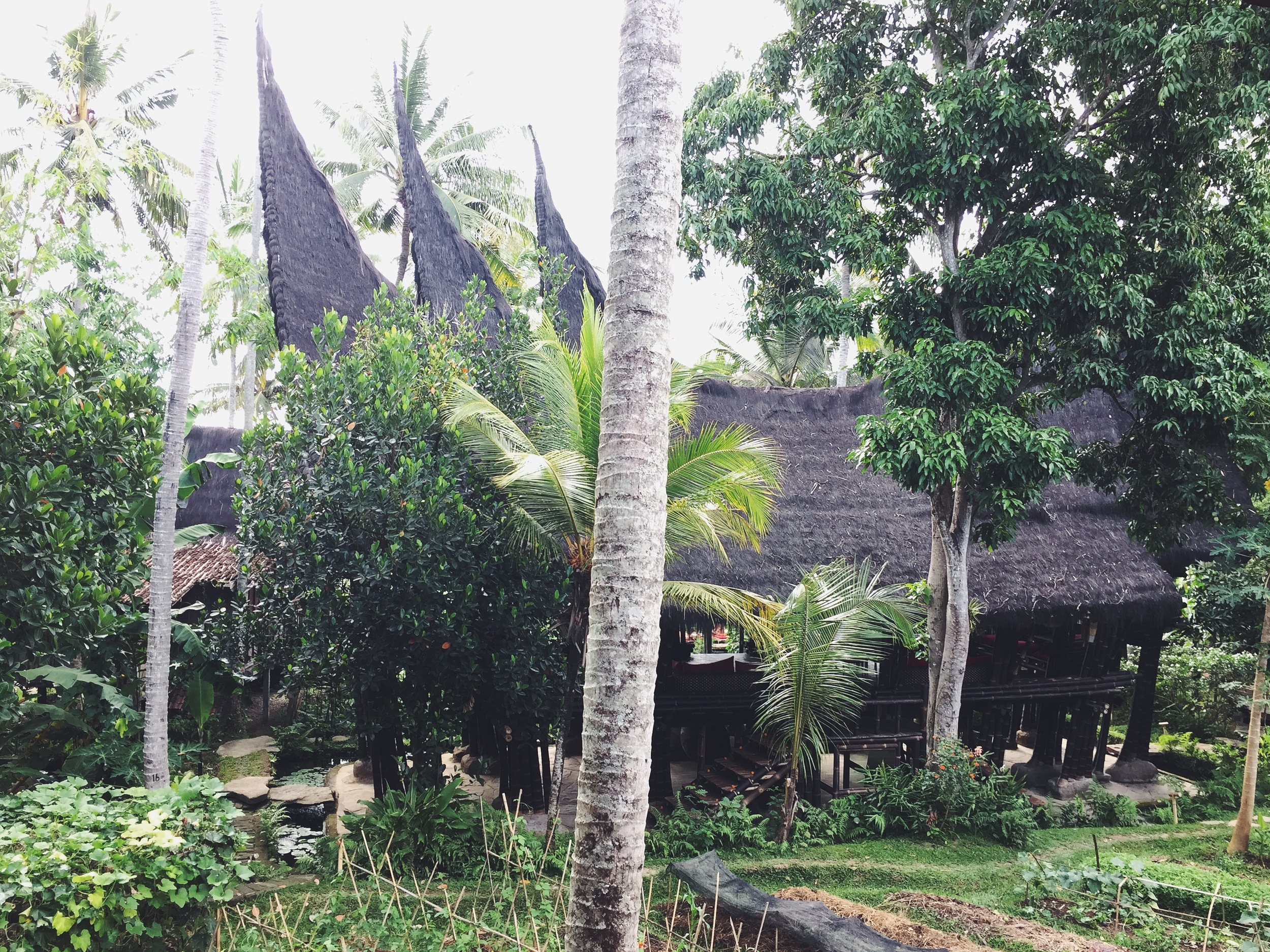 While in Ubud we stayed at Bambu Hinda, an eco-resort made of bamboo structures and old Javanese bridal huts. The entire resort has views of rice paddies and serves some of the best food in Bali.