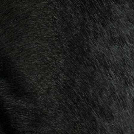 black hair-on hide