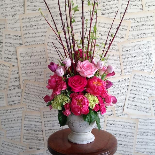 cd jennifer macy love peace flowers 10351957_10152193124130838_7211231751977615344_n.jpg