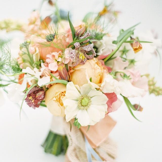 Holly Heider Chapple Flowers    (I mage:  Jodi Miller Photography )
