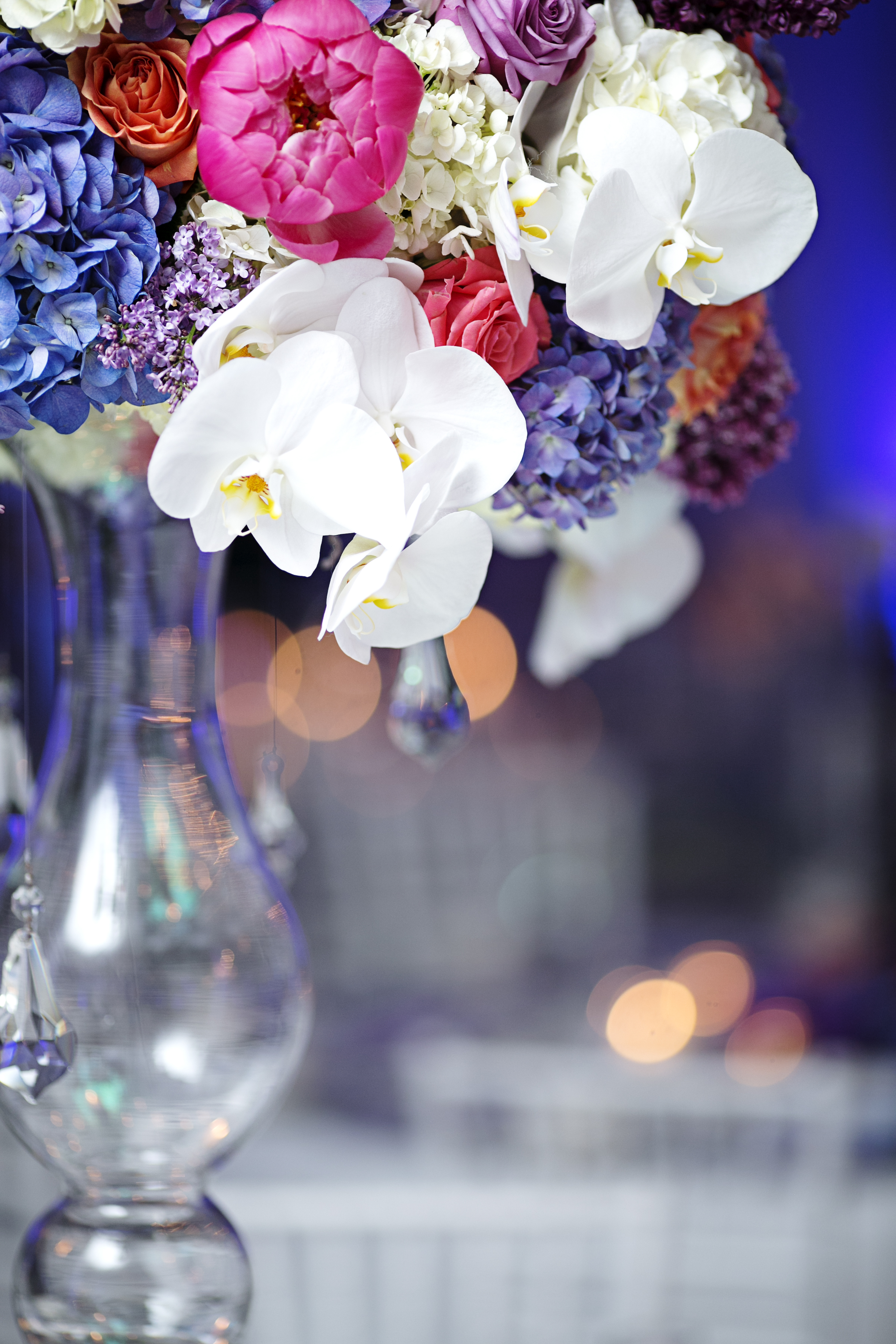 Stacy K Floral    Image courtesy of  Tammy Swales Studio