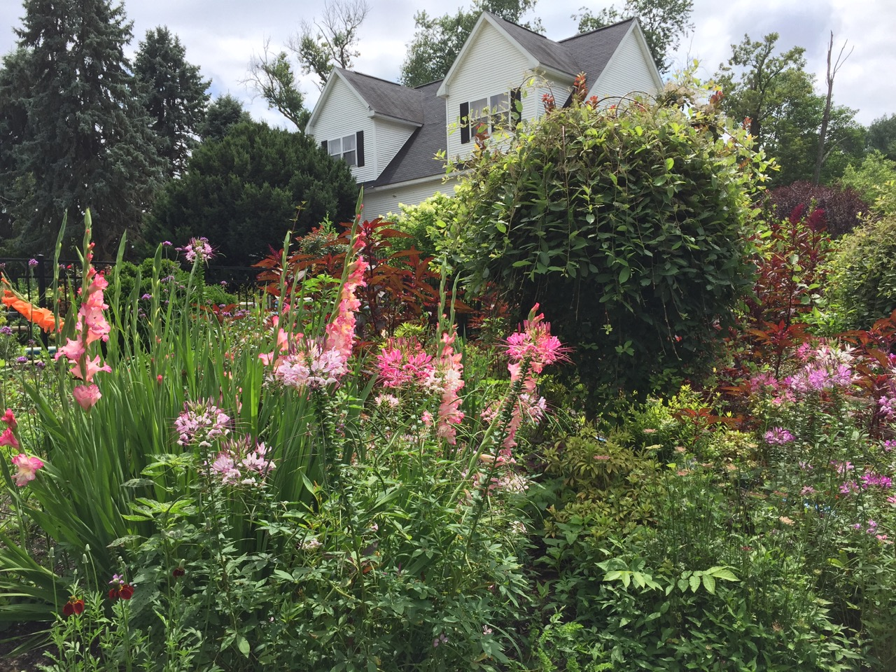 The Chapple Home and Gardens