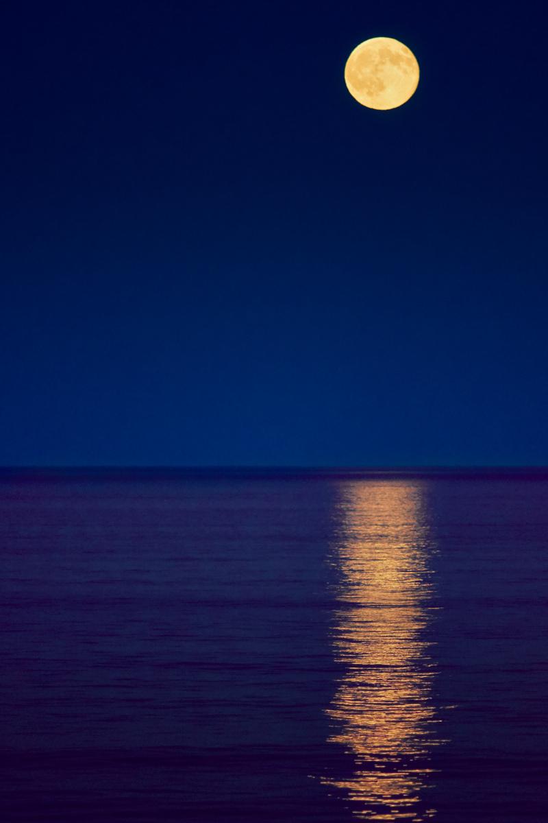7/31/15 Full Moon Rise