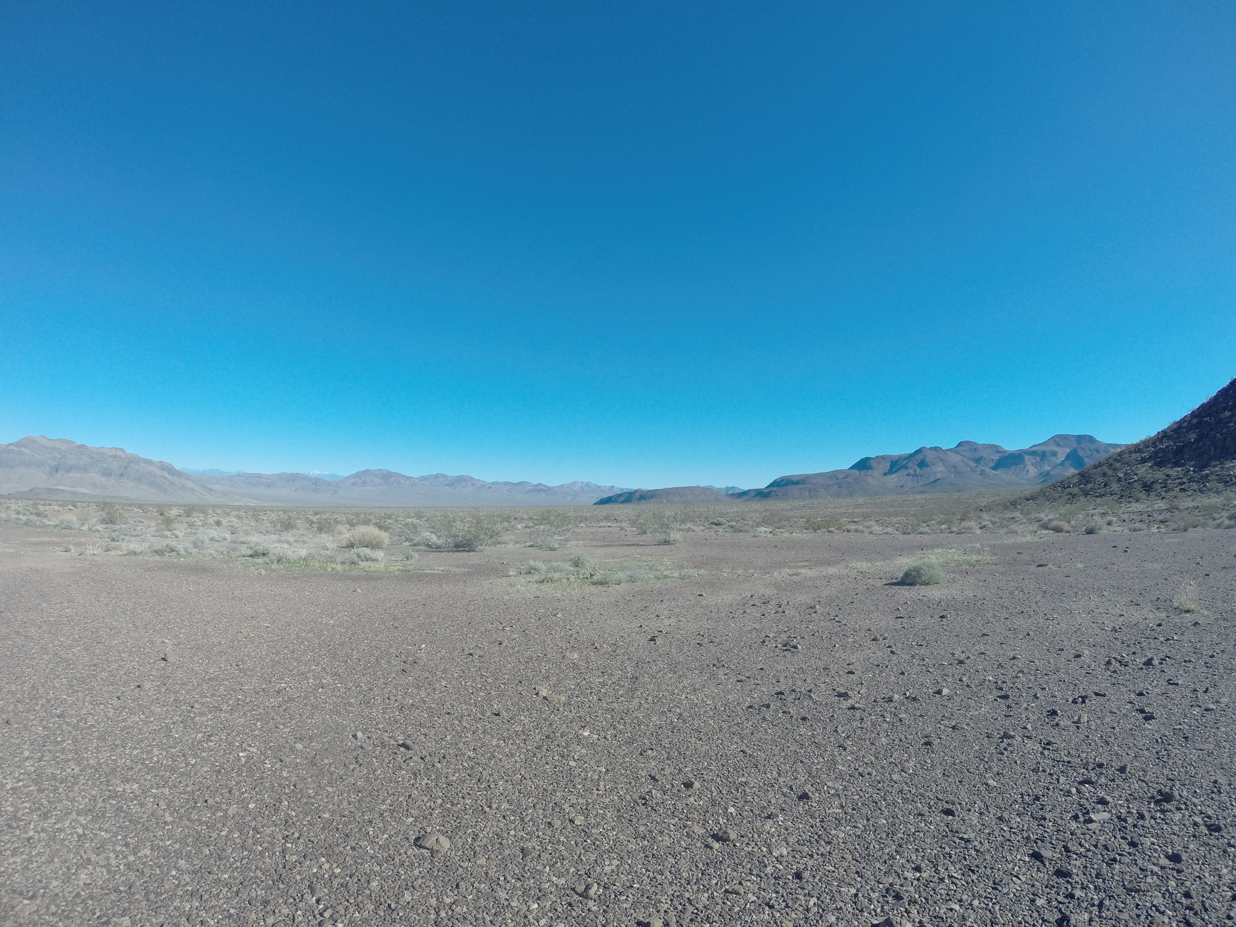 Cutting across the desert