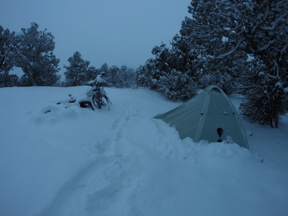 New Year's 2015 in Utah - about a foot of snow fell down over the night