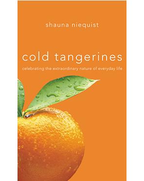 coldtangerines.png