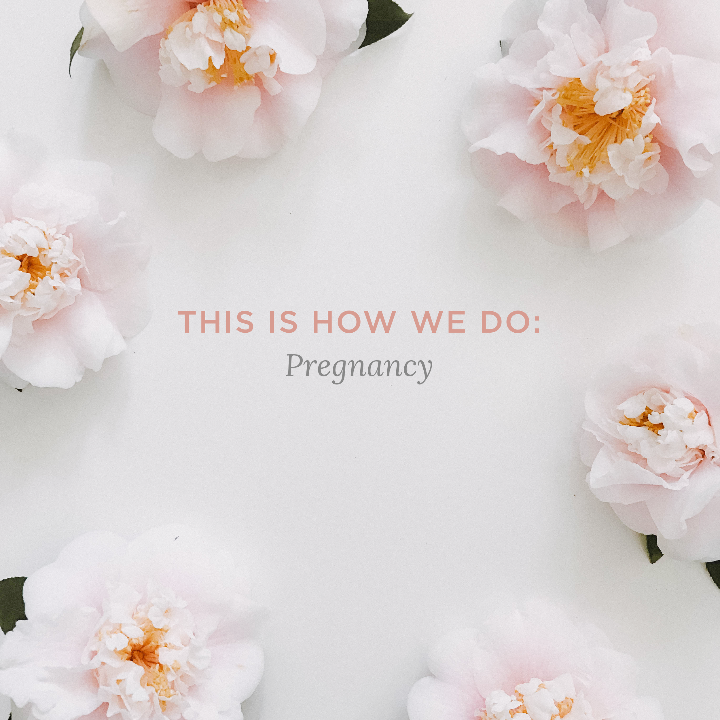 TIHWDpregnancy.png