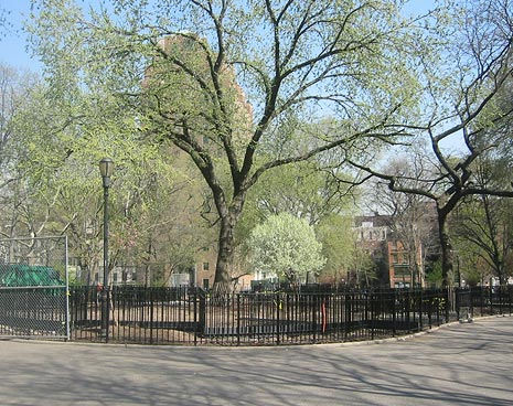 Southern view of the dog park