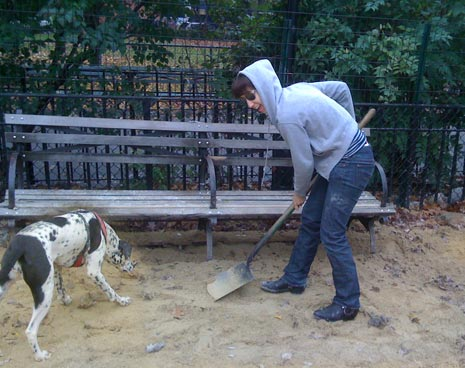 Filling in holes beneath the park benches