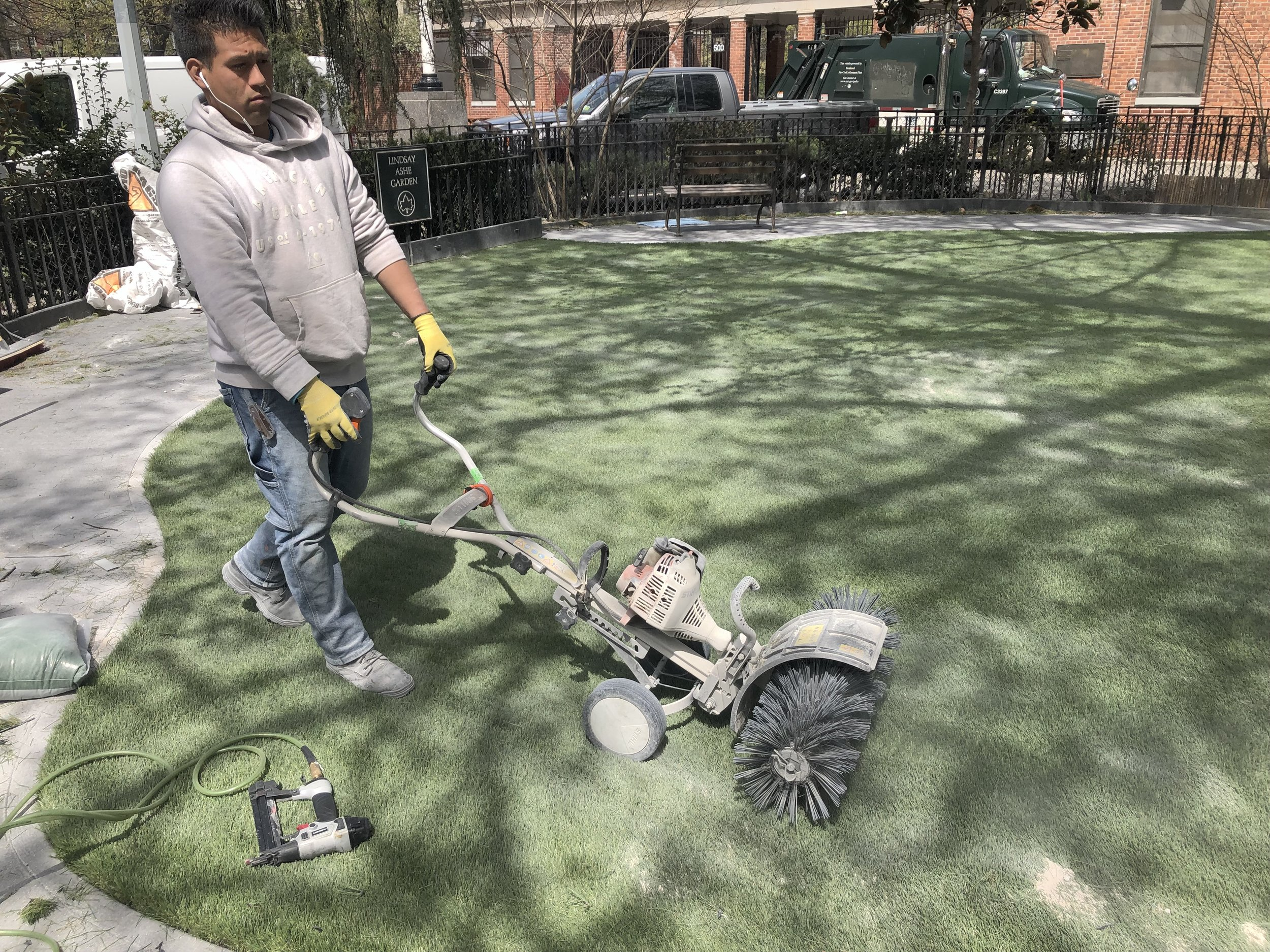 Zeolite is buffed into the grass for odor control