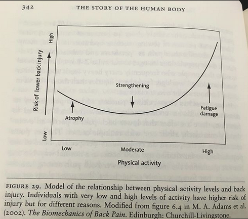 From the book,  The Story of the Human Body, Daniel Lieberman