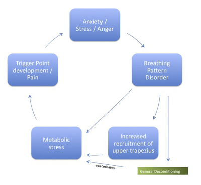 Examples of factors that may contribute to dysfunction in the upper trapezius  Reference