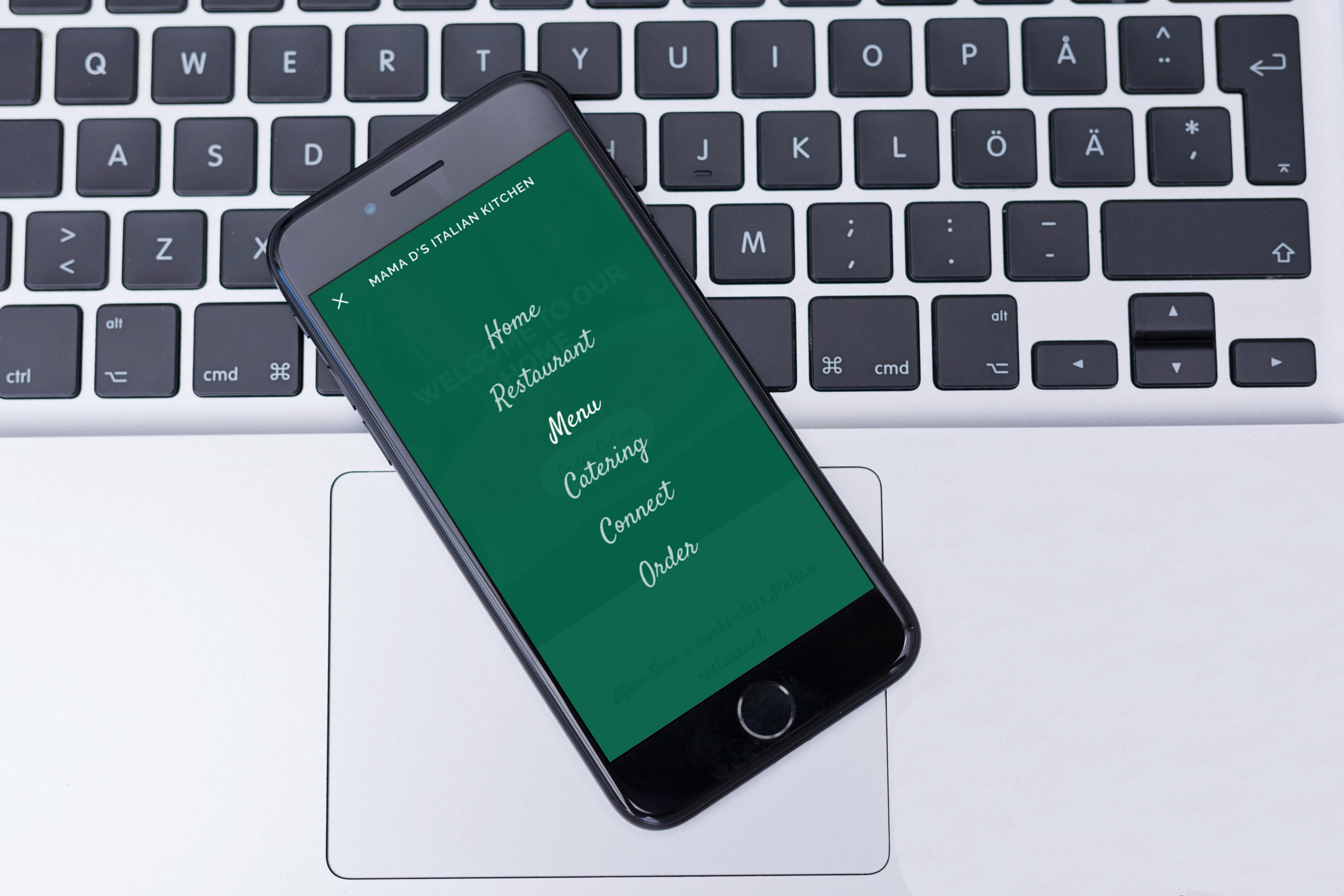 The mobile menu navigation.