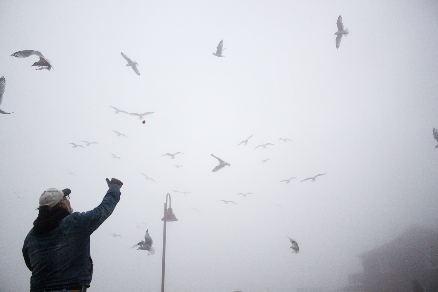 Rik Gendron feeds birds at the waterfront in Ossining, New York.