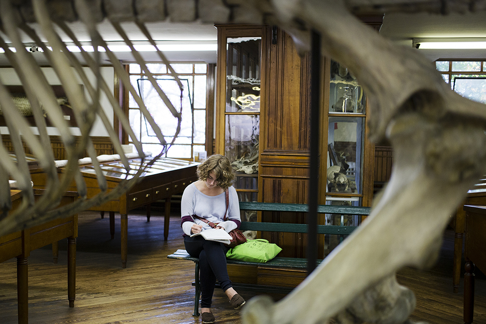 A student enrolled in Museum Studies: Curating Authenticity takes notes while exploring the Wagner Museum.