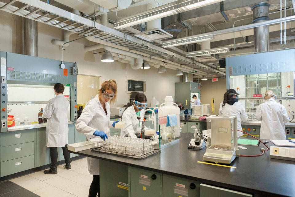 IMG_6690-Undergraduate-students-from-the-Department-of-Chemistry-for-web.jpg
