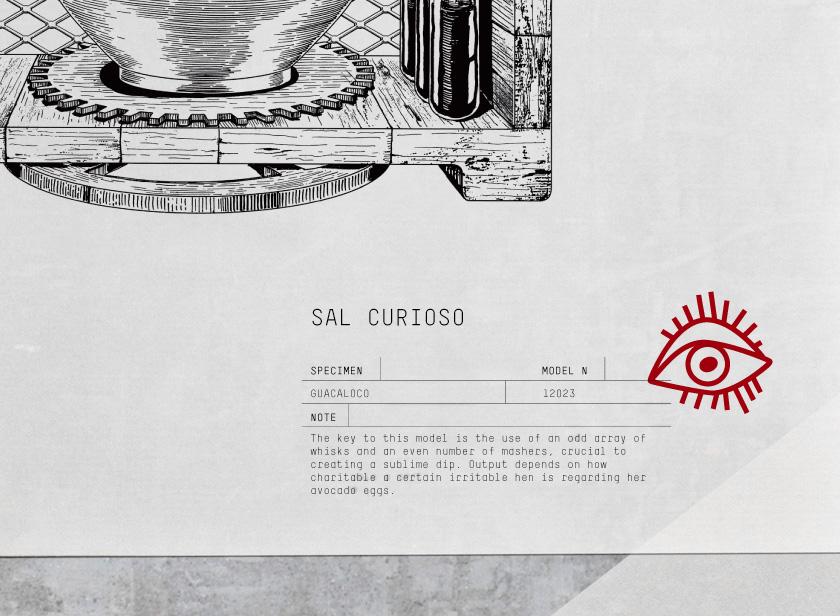 sal curioso_identity_02_b.jpg
