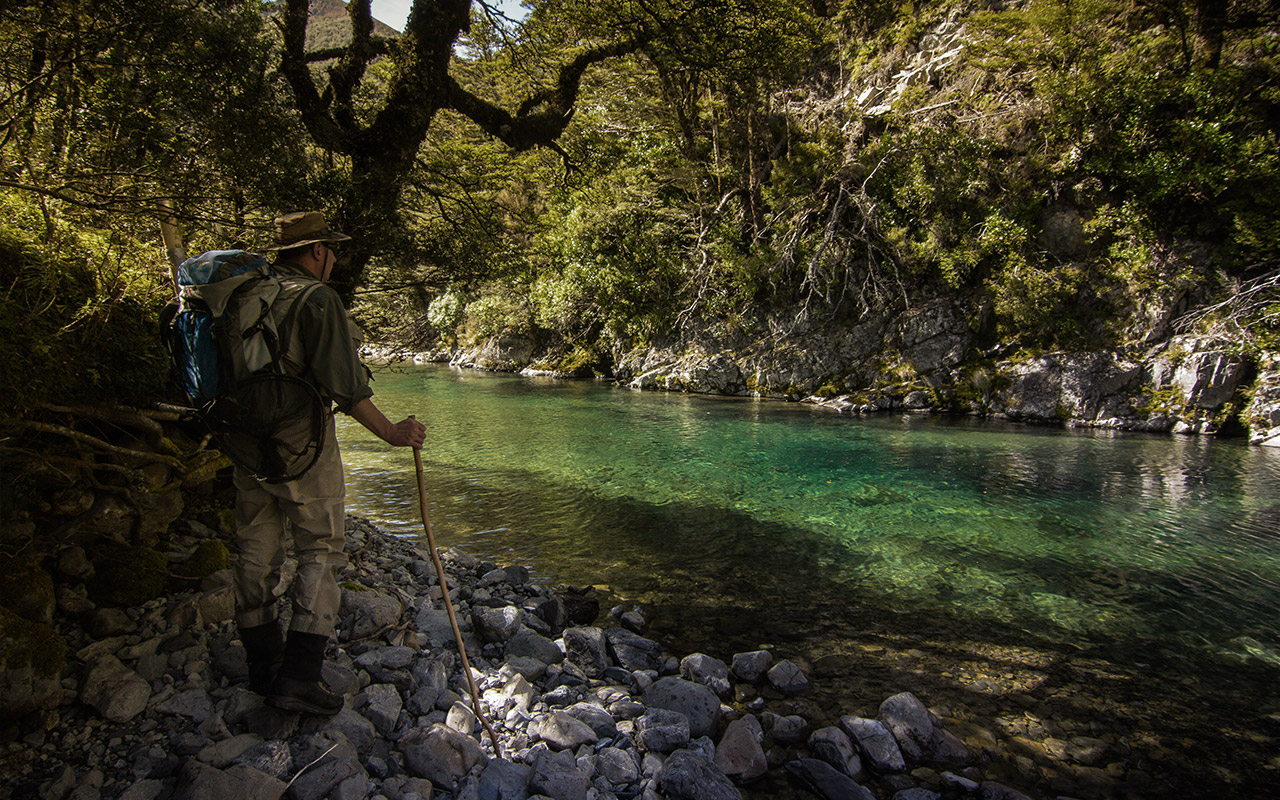 Viewing a backcountry trout fishing river