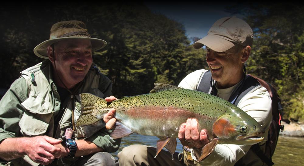 Wild New Zealand Rainbow Trout