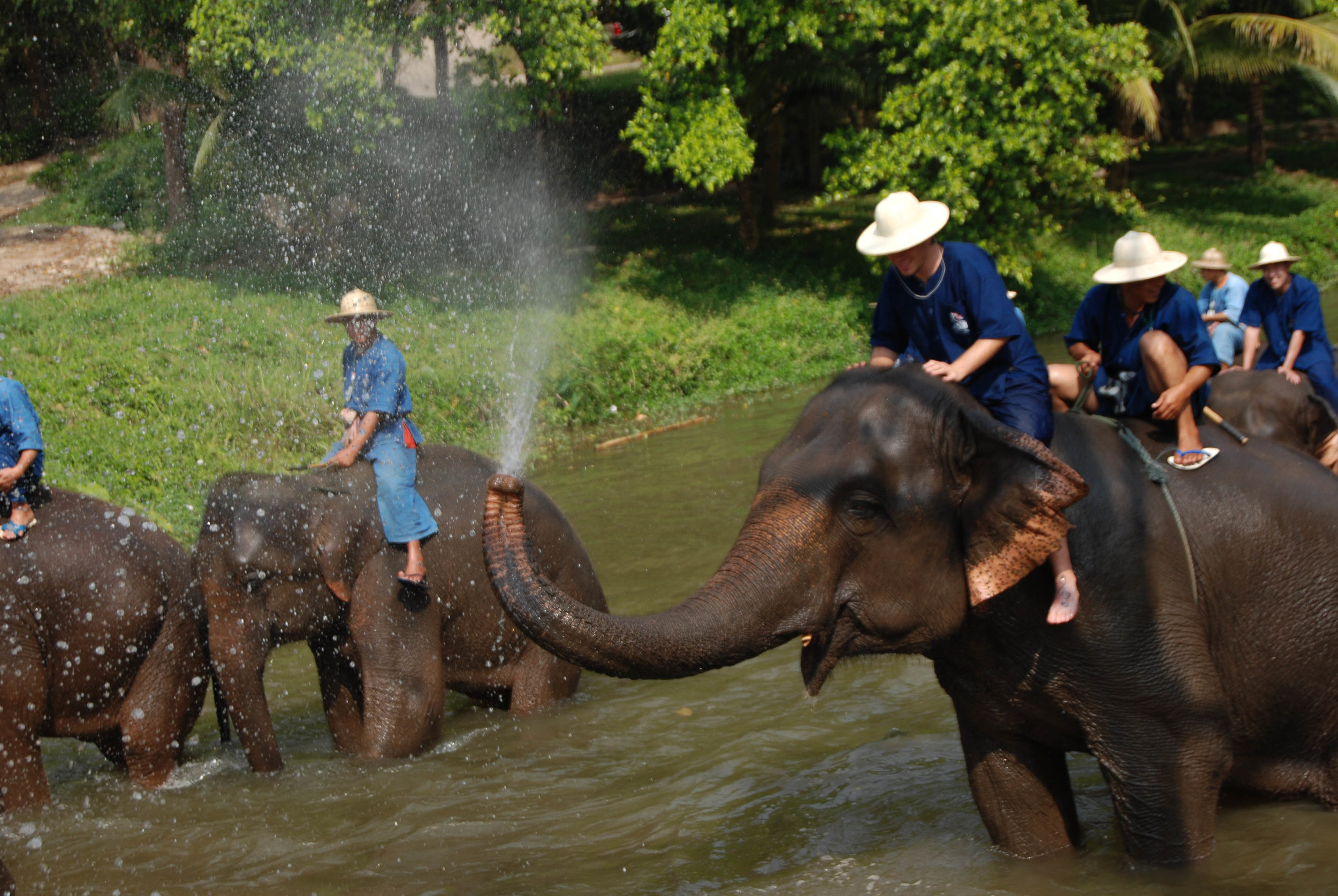 Travel (Thailand)-73.jpg