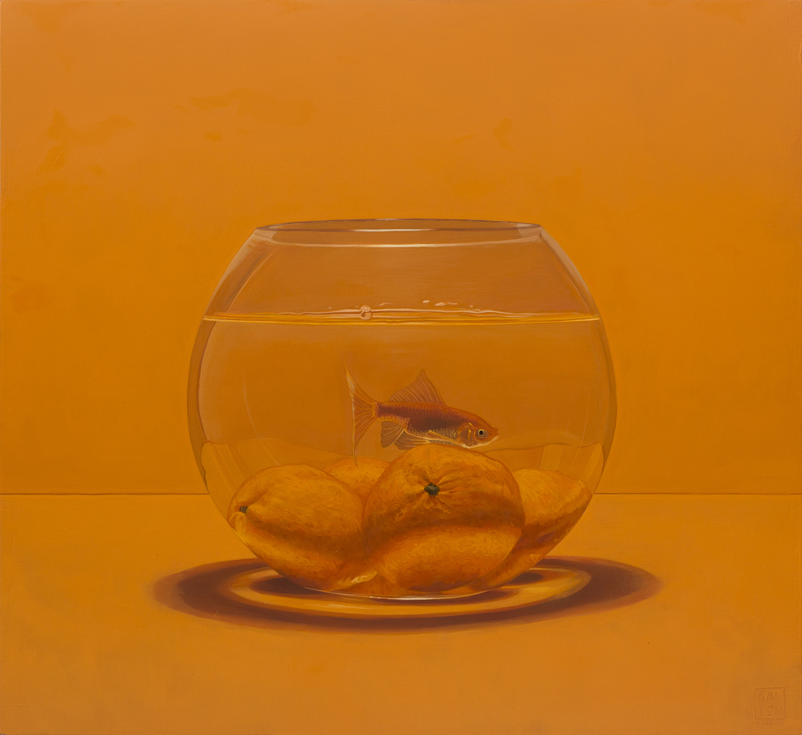 Fishbowl Orange 55x60cm Oil on Board.jpg