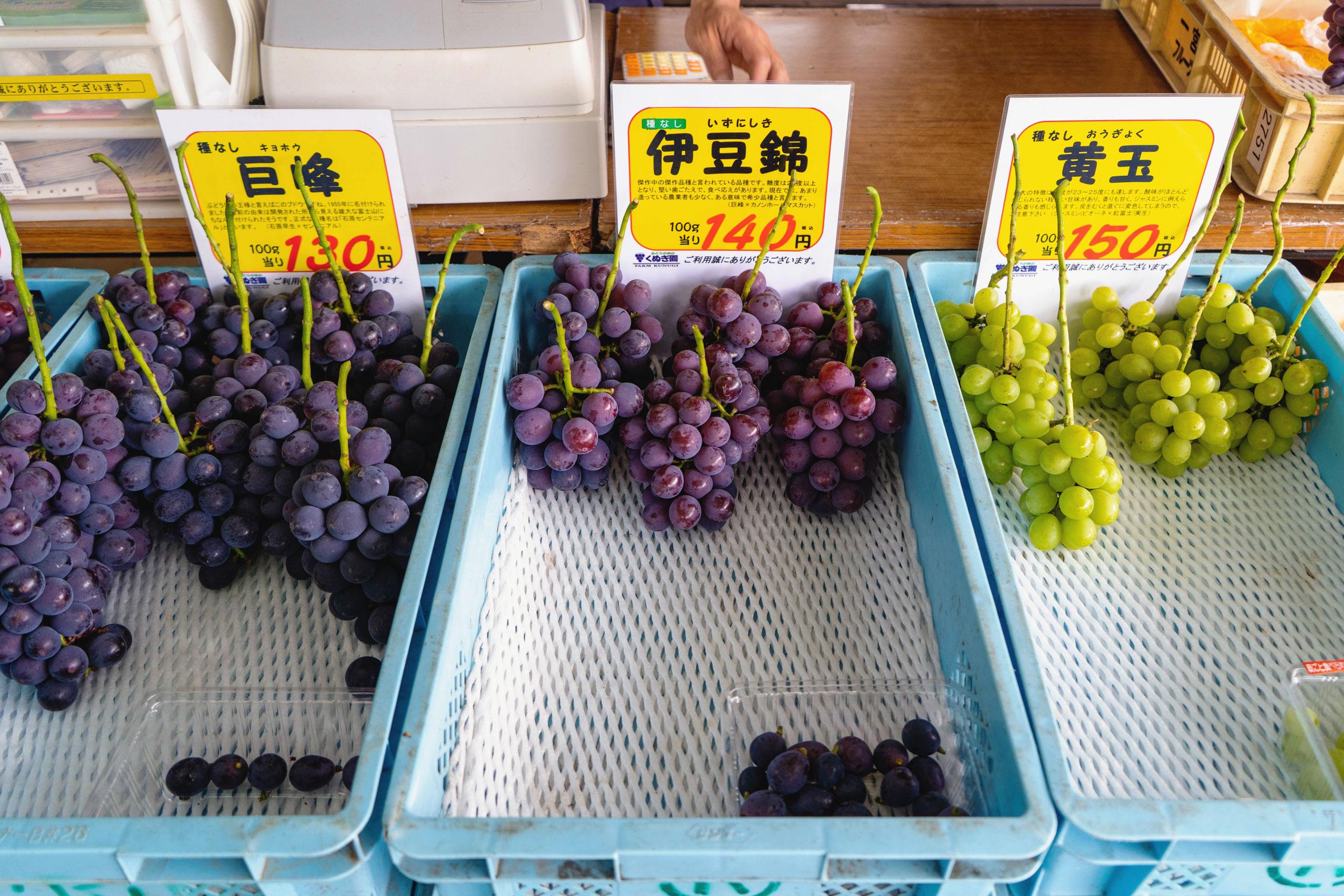 yamanashi-grapes-08.jpg