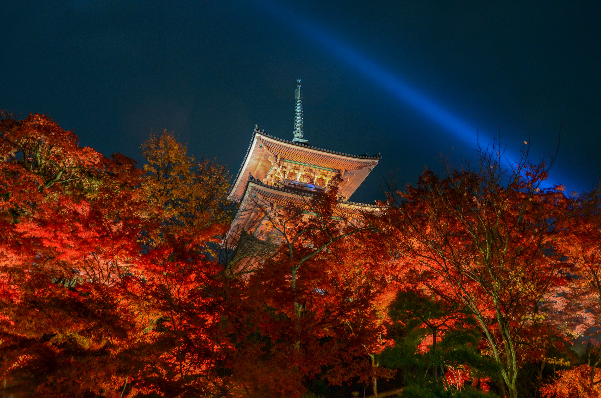 Fall leaves at Kiyomizudera in Kyoto- [  BUY PRINT   - Enter KYOTOFALL for 10% off]