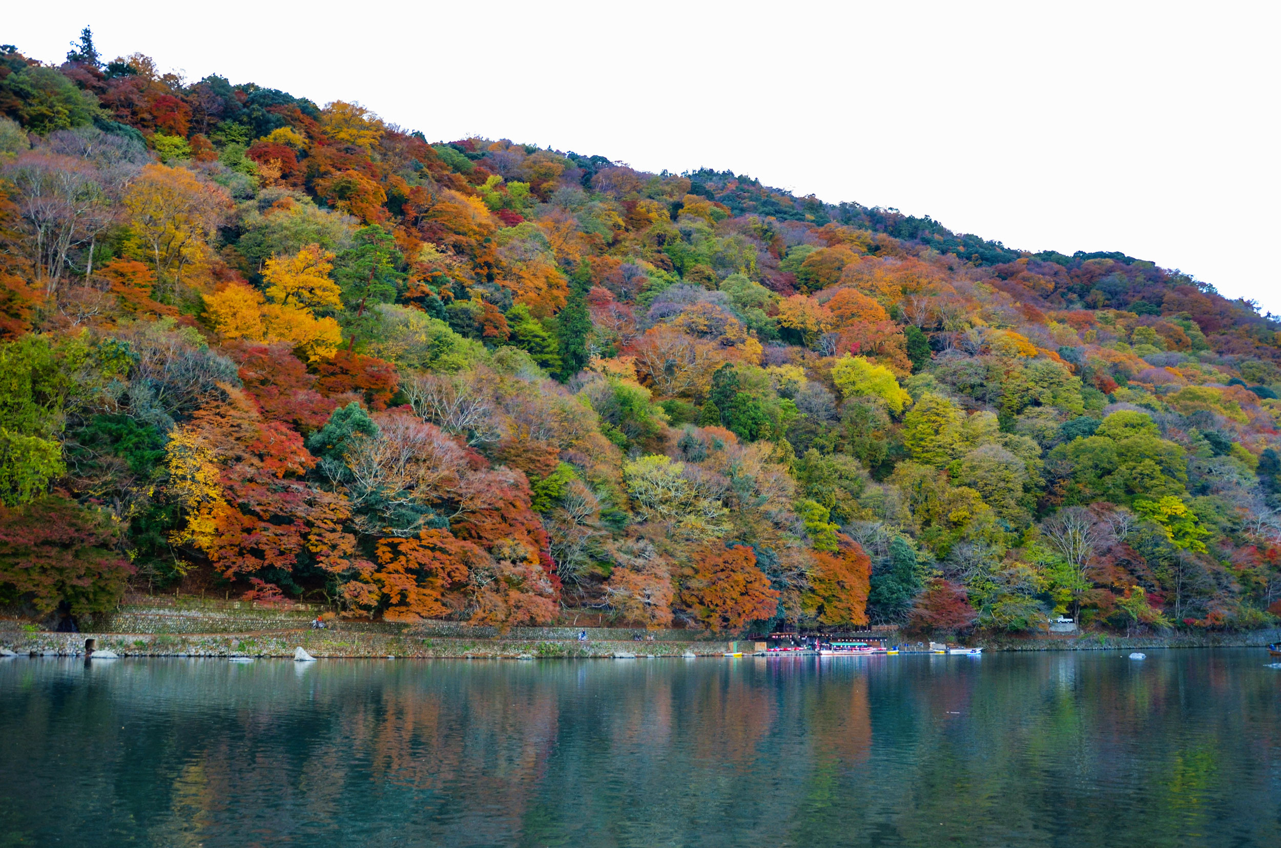 Fall leaves on the Arashiyama riverside in Kyoto