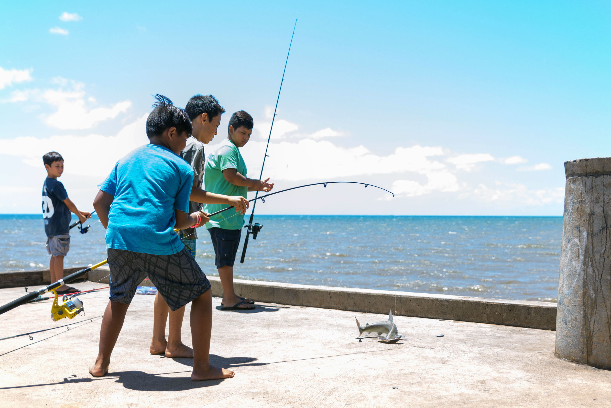 Local kids catch a baby Hammerhead shark at the Waimea Landing
