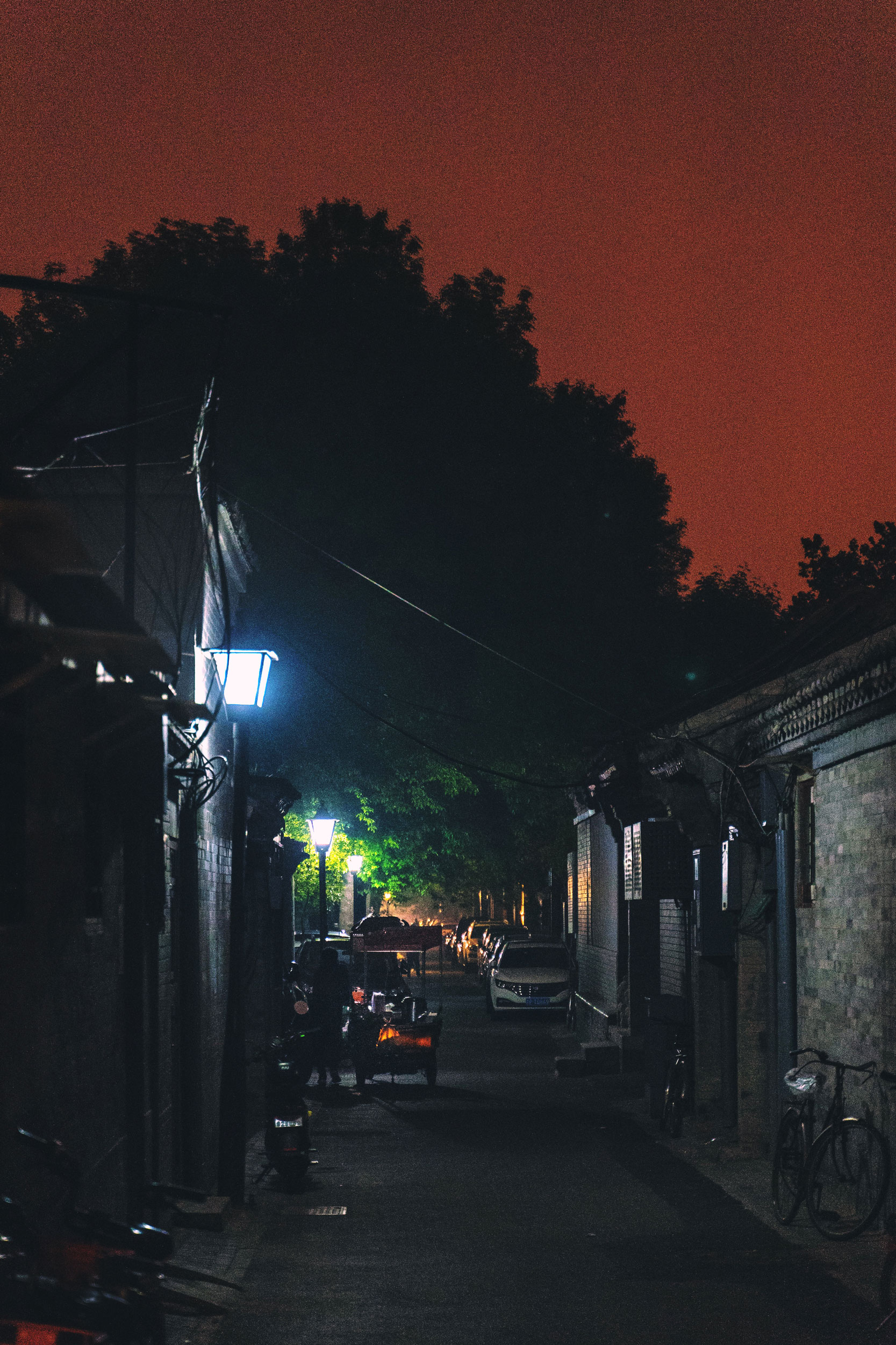 A woman with an open-fire food cart near Luogu Lane under an orange night sky.