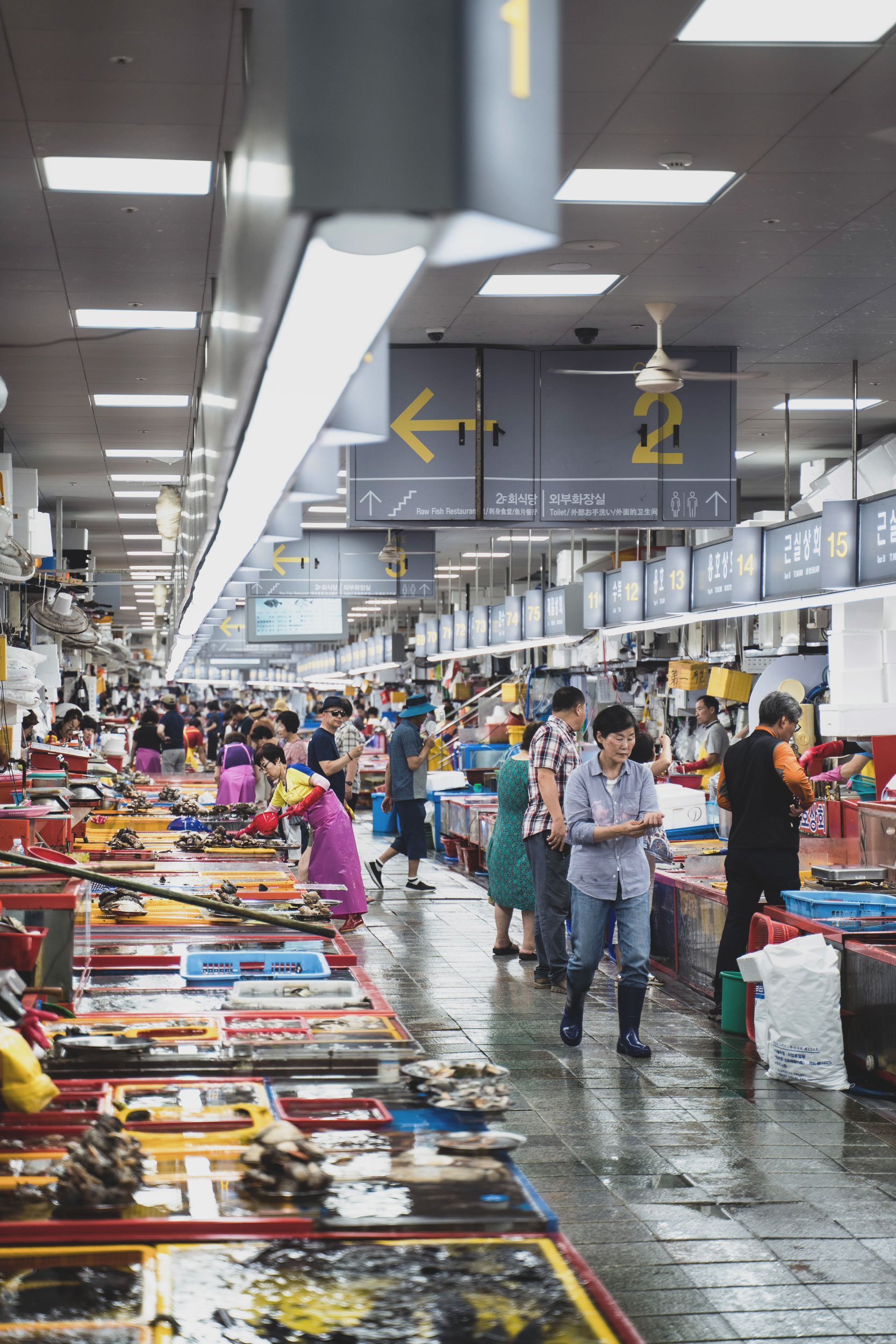 busan-41-jagalchi-market.jpg