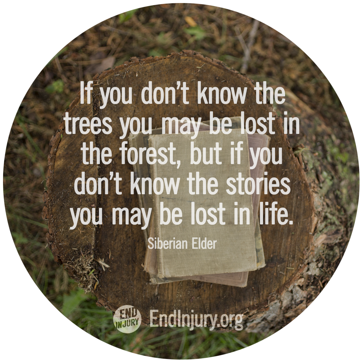 know-stories-lost-life-quote.png