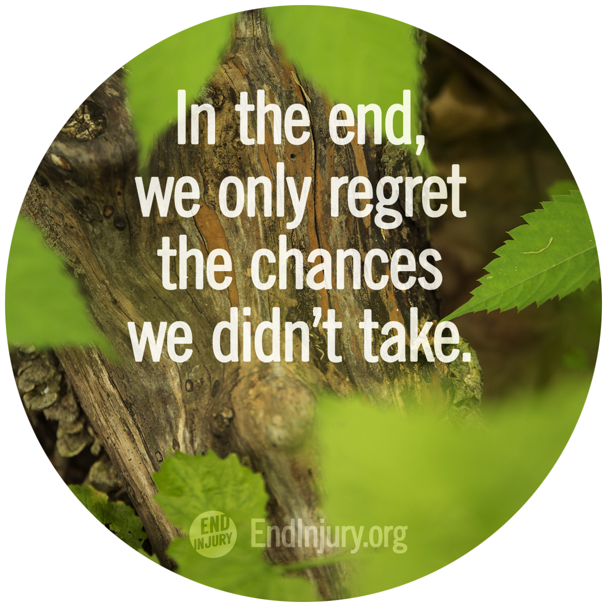 regret-chances-quote.png