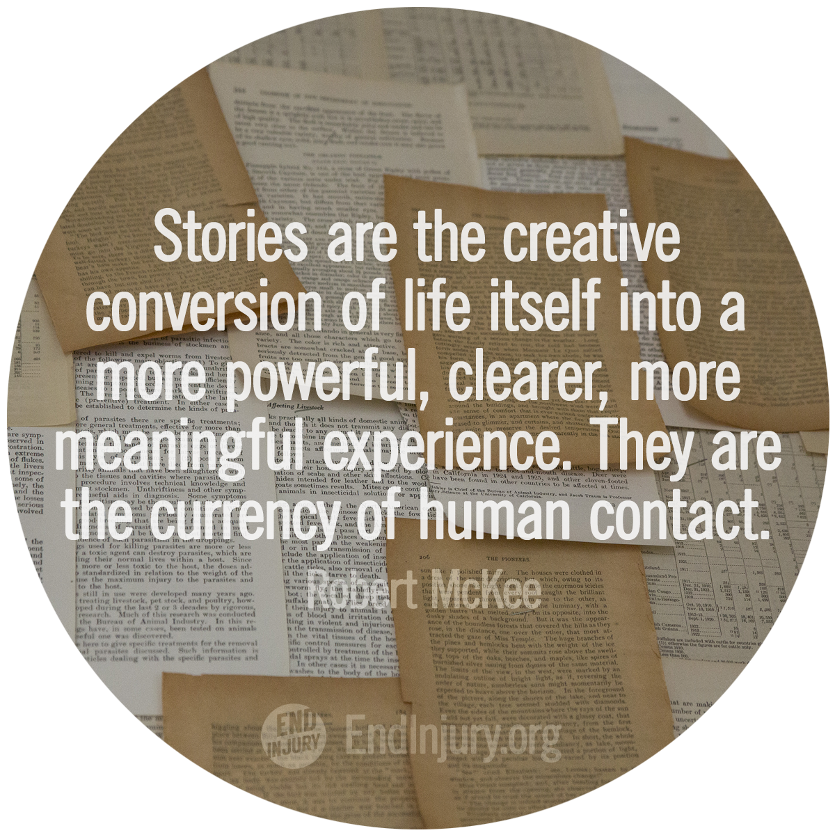 stories-mckee-quote-photo.png
