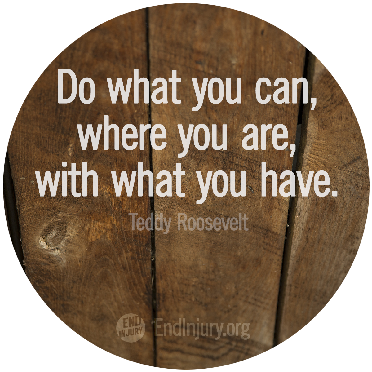 do-roosevelt-quote-photo.png