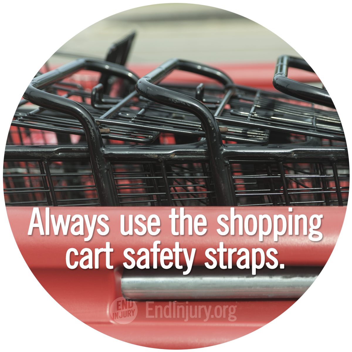 shopping-cart-straps-action-photo.png