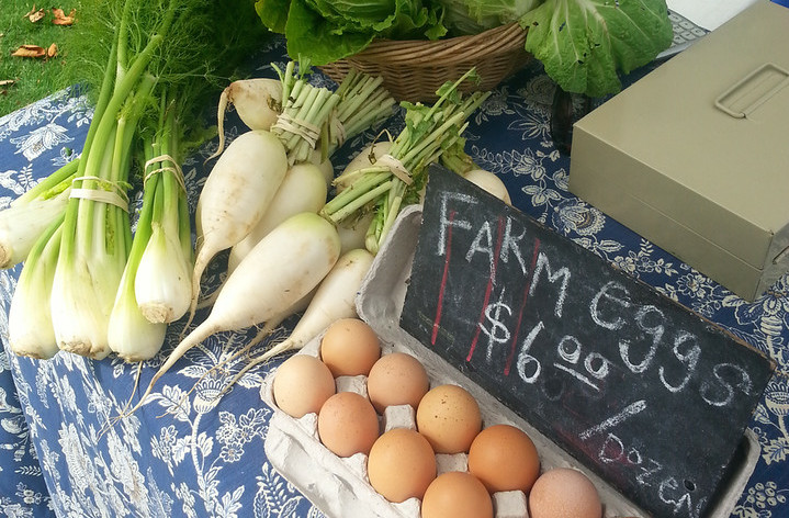 The Decatur Farmers Market is open for the season at FBCD. Come visit the market on the front lawn on Wednesdays between 4:00 and 7:00 p.m. and Saturdays between 9:00am and 1:00pm.