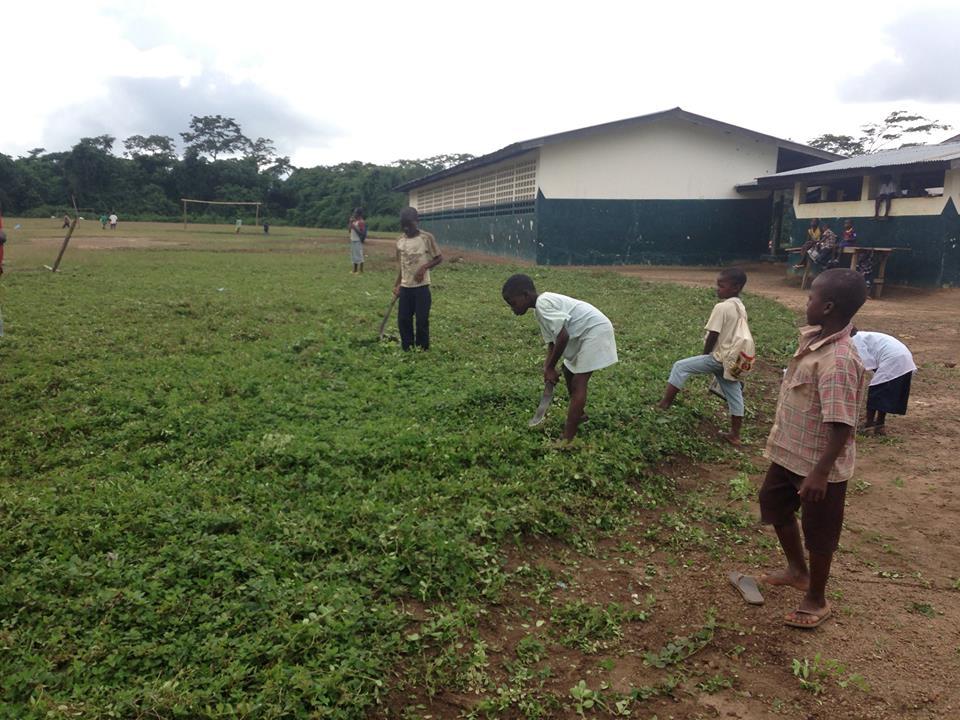 Children clean school grounds