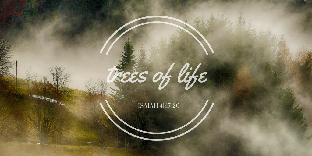 Trees of Life TW.png