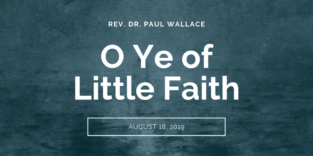 sermons-o-ye-of-little-faith-first-baptist-church-decatur-paul-wallace-tw.png